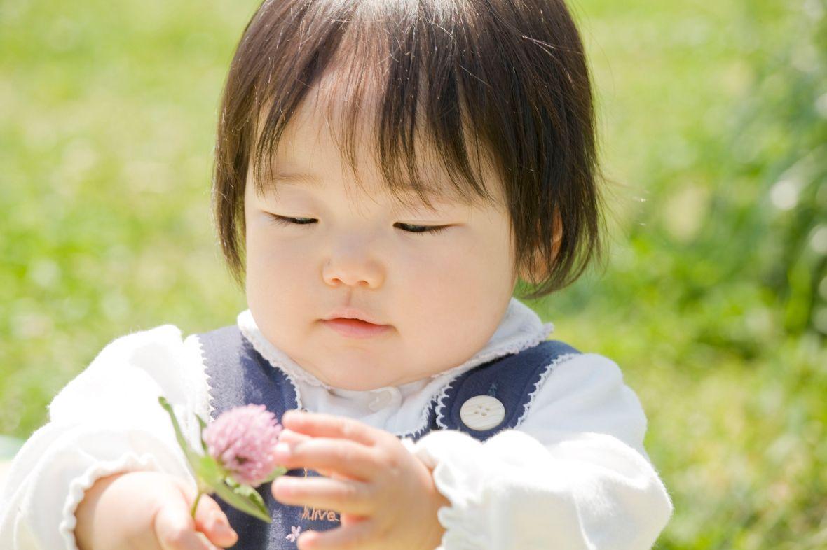 43168180 - baby portraits